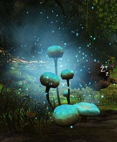 Imbued Mushroom.jpg