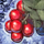 Fresh Winterberry.png