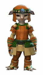 Chainmail armor asura female front.jpg