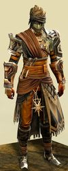 Elonian armor (medium) sylvari male front.jpg
