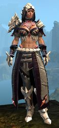 Refined Envoy armor (medium) norn female front.jpg