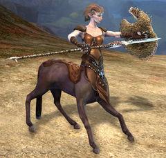 https://wiki.guildwars2.com/images/thumb/c/c6/Harathi_Lancer.jpg/240px-Harathi_Lancer.jpg