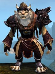 Ornate Guild armor (light) charr female front.jpg