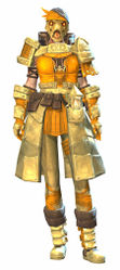 Forgeman armor (medium) norn female front.jpg