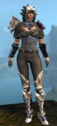 Perfected Envoy armor (medium) norn female front.jpg