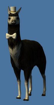Mini Elegant Black Llama Guild Wars 2 Wiki Gw2w