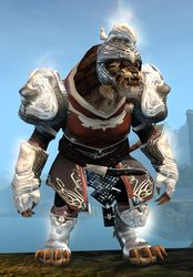 Radiant armor (medium) charr male front.jpg