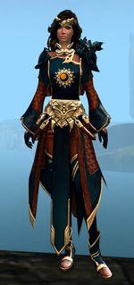 Ornate guild vestments lhvo investments