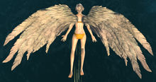 White Feather Wings Glider.jpg