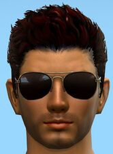 Aviator Sunglasses.jpg