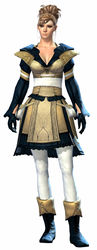 Country armor norn female front.jpg