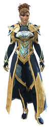 Council Watch armor norn female front.jpg