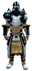 Forgeman armor (light) human male front.jpg