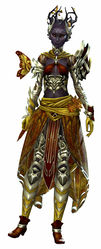 Carapace armor (light) sylvari female front.jpg