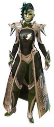 Guild Watchman armor sylvari female front.jpg