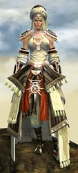Spearmarshal's armor (light) norn female front.jpg
