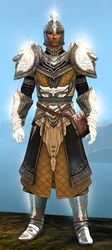 Radiant armor (light) human male front.jpg