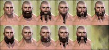 Norn male facial hair.jpg