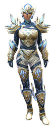 Glorious Hero's armor (medium) norn female front.jpg
