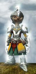 Radiant armor (light) asura male front.jpg