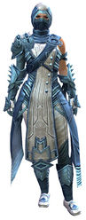 Inquest armor (medium) norn female front.jpg