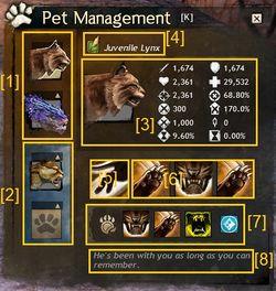 Pet - Guild Wars 2 Wiki (GW2W)
