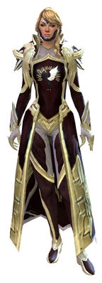 Guild Watchman armor human female front.jpg