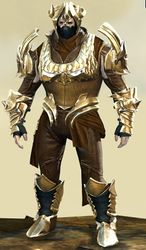 Mist Shard armor (medium) norn male front.jpg