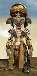 Spearmarshal's armor (light) asura male front.jpg