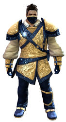 Duelist armor norn male front.jpg