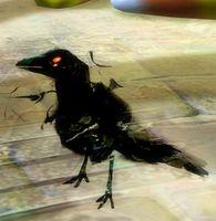 Shadow Raven Tonic.jpg
