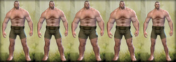 Norn male physique.jpg