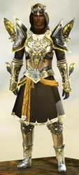 Mistforged Glorious Hero's armor (light) human male front.jpg