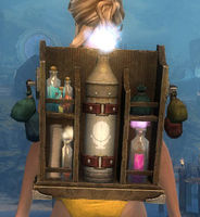 Intricate Artificer's Backpack.jpg