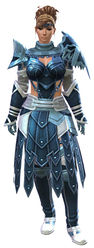 Vigil's Honor armor (medium) norn female front.jpg