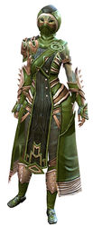 Inquest armor (medium) sylvari female front.jpg