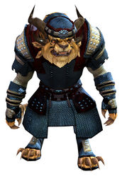 Chainmail armor charr male front.jpg