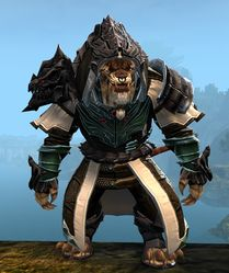 Refined Envoy armor (medium) charr male front.jpg