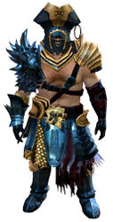 Scallywag armor norn male front.jpg