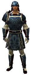 Worn Scale armor human male front.jpg