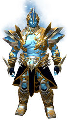 Zodiac armor (medium) norn male front.jpg