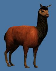 Mini Emperor Llama Guild Wars 2 Wiki Gw2w