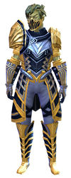 Priory's Historical armor (medium) sylvari male front.jpg