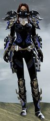 Mistforged Triumphant Hero's armor (medium) norn female front.jpg