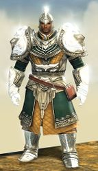 Radiant armor (light) norn male front.jpg