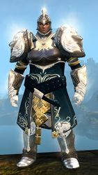 Radiant armor (medium) norn male front.jpg
