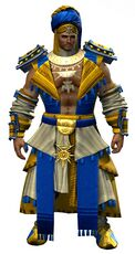 Elonian armor (light) norn male front.jpg