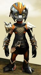 Elegy armor (medium) asura male front.jpg