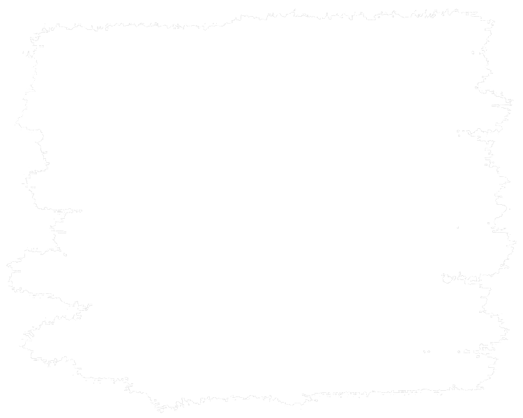 logo nederlands elftal vector 17ac