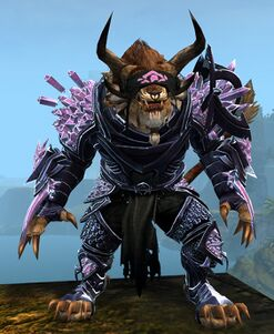 Crystal Arbiter Outfit charr male front.jpg
